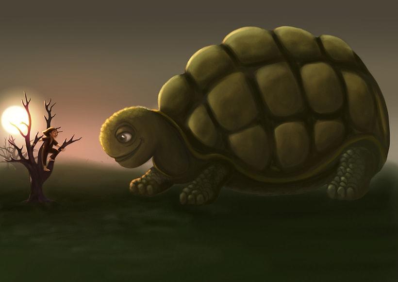 Tortoise Morla 0