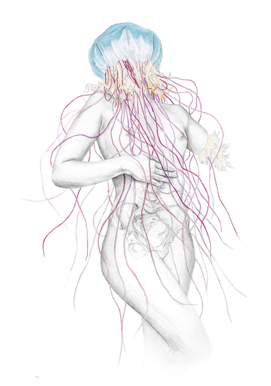 Jellyfish IV 0