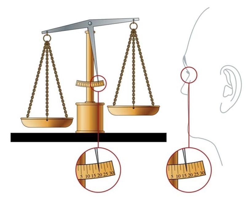 Ilustraciones para libros de texto 3