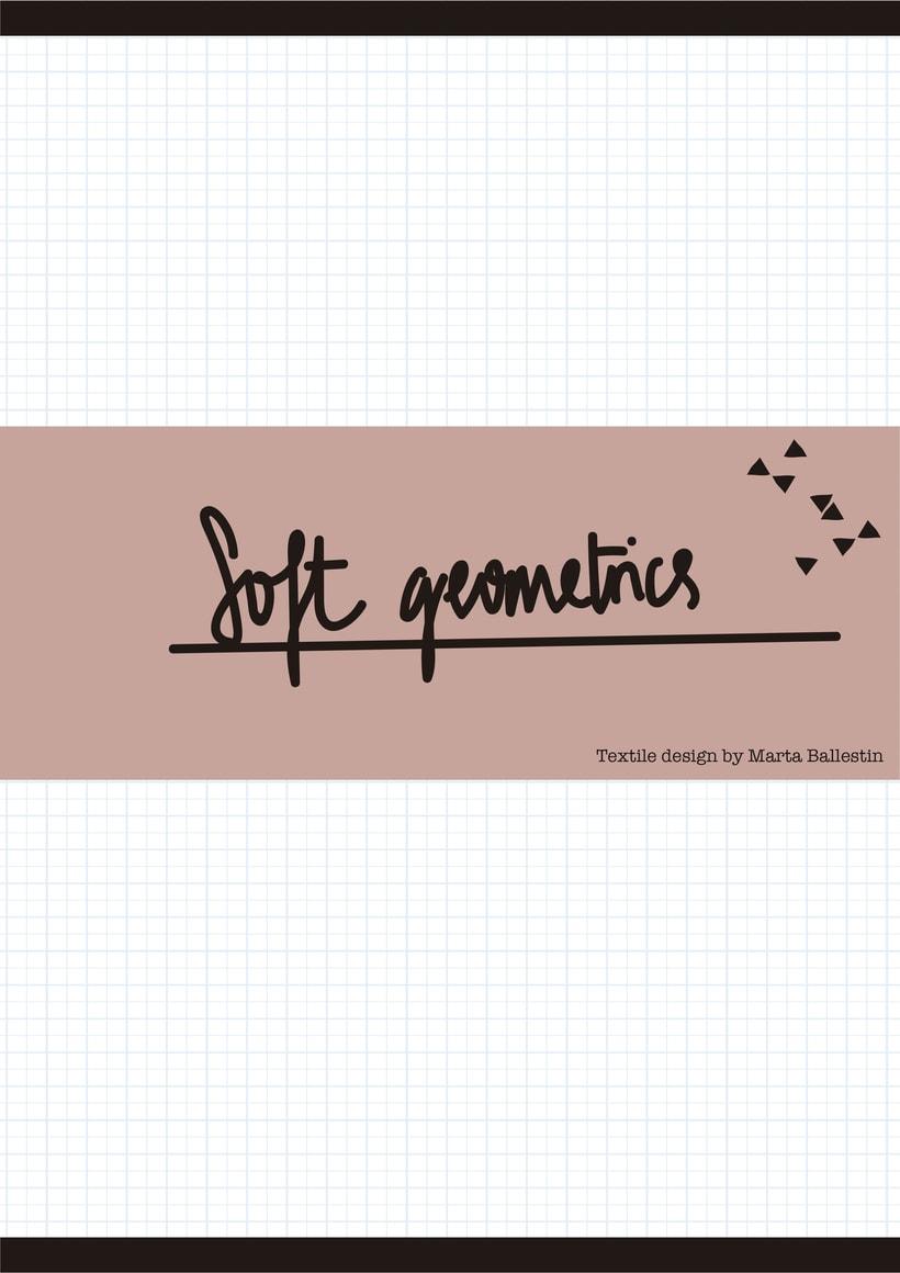 SOFT GEOMETRICS 0