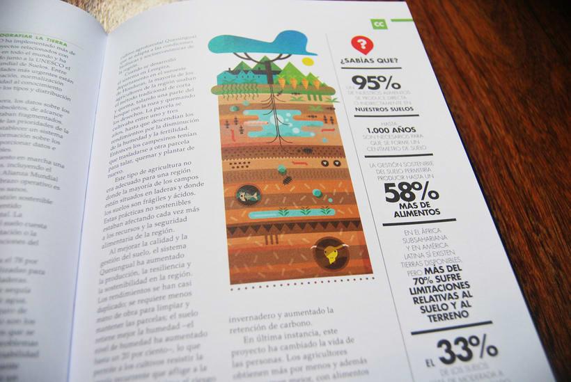 FAO: 70 aniversario 36