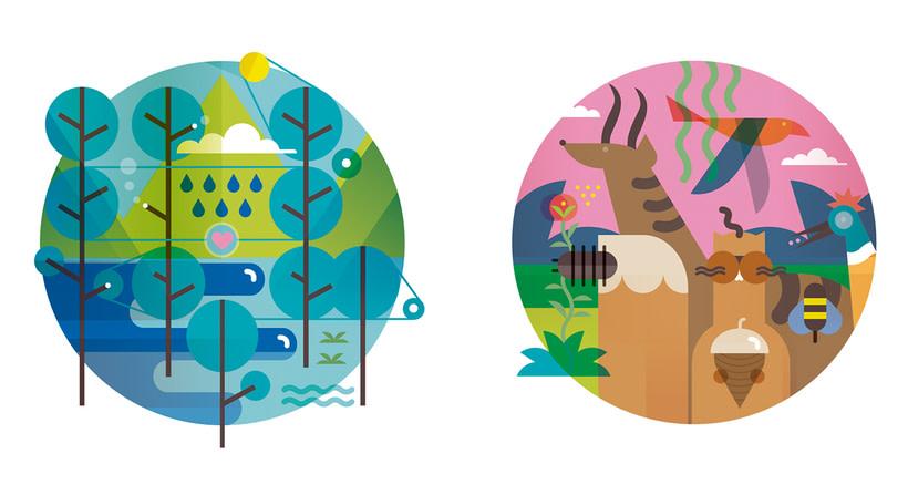 FAO: 70 aniversario 43