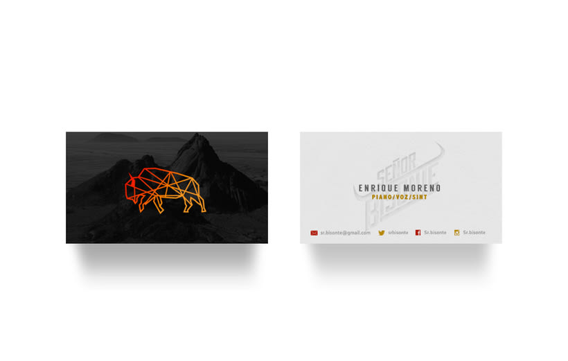 Señor Bisonte Branding/Cover Album 5