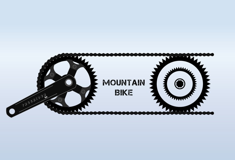 Proyecto Bike 1