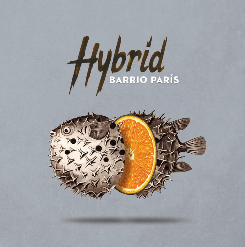 """""""Hybrid"""" album cover for Barrio París 1"""