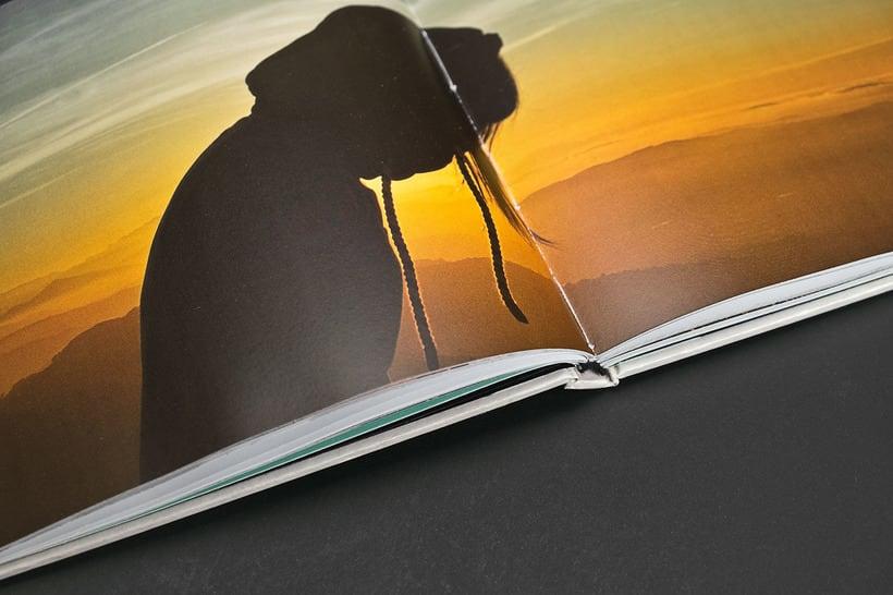 Guiomar Book 14