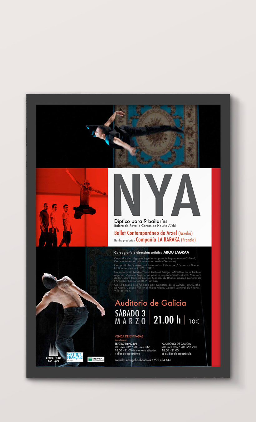 Diseño Publicitario (Brochures, Flyers, Posters) 1