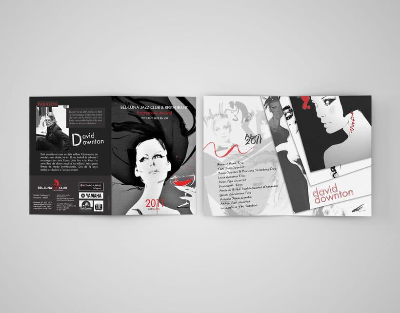 Diseño Publicitario (Brochures, Flyers, Posters) 3