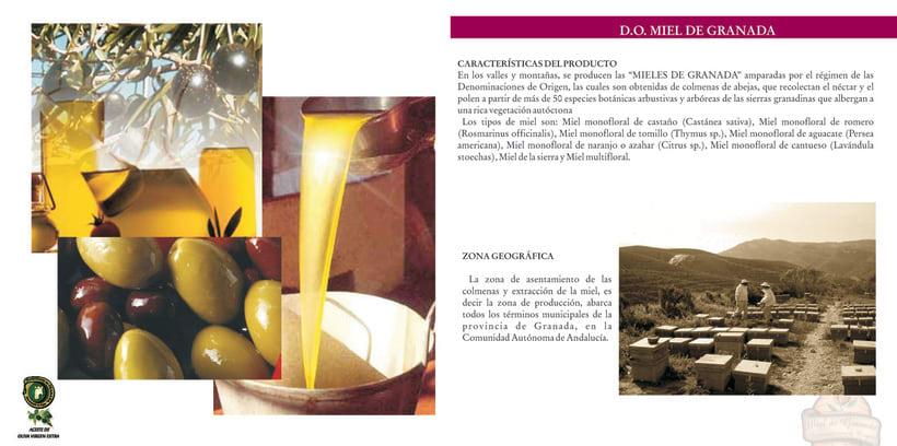 Catalogo Fedecal 2