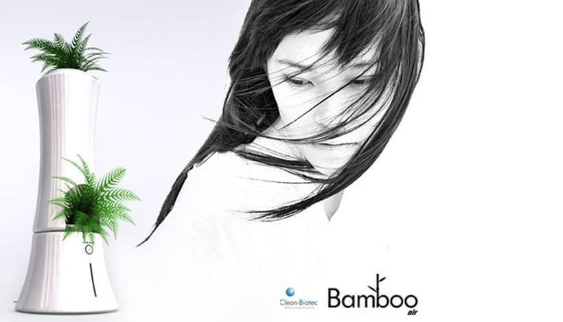 Bamboo Air 0