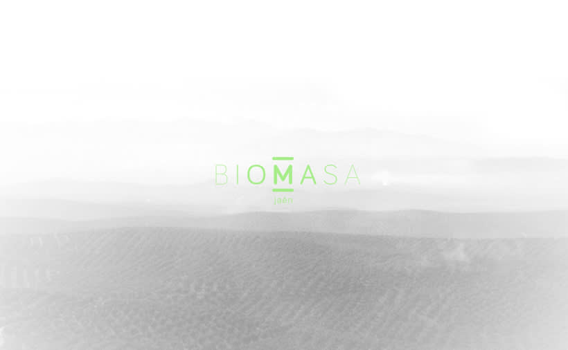 Biomasa Jaén 7