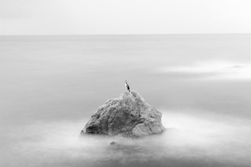 Simplicity Contrasted. Proyecto fotográfico 11
