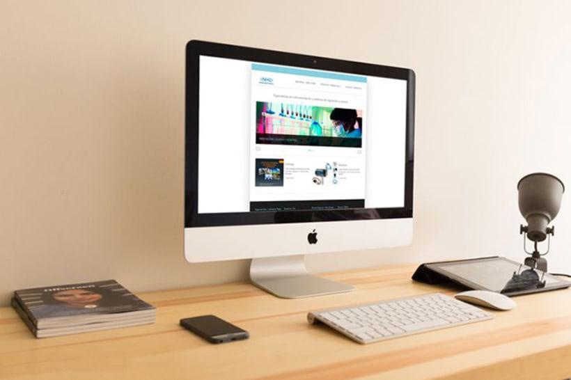 Diseño Web - Ineko -1