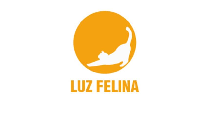 Luz felina 0