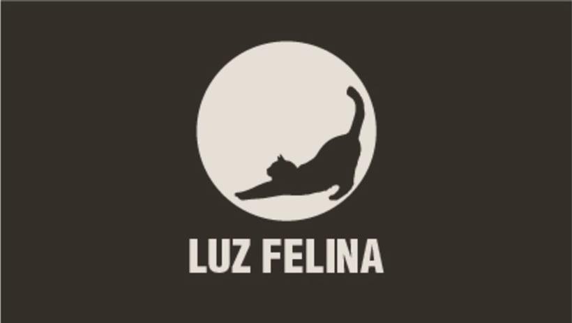 Luz felina 1