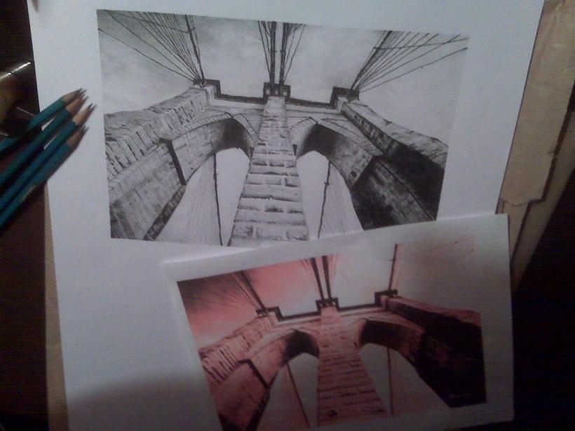 Illustraciones / Illustrations 5