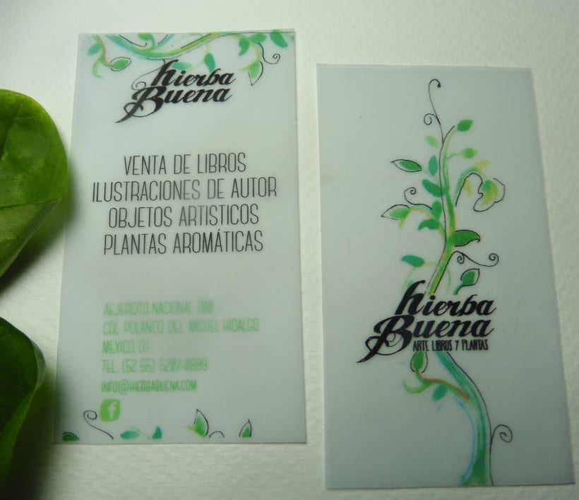 Diseño y aplicación de marca, Hierba Buena 2