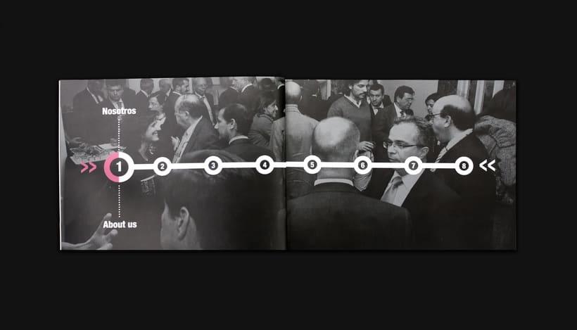Annual report 2012 - AEADE 3