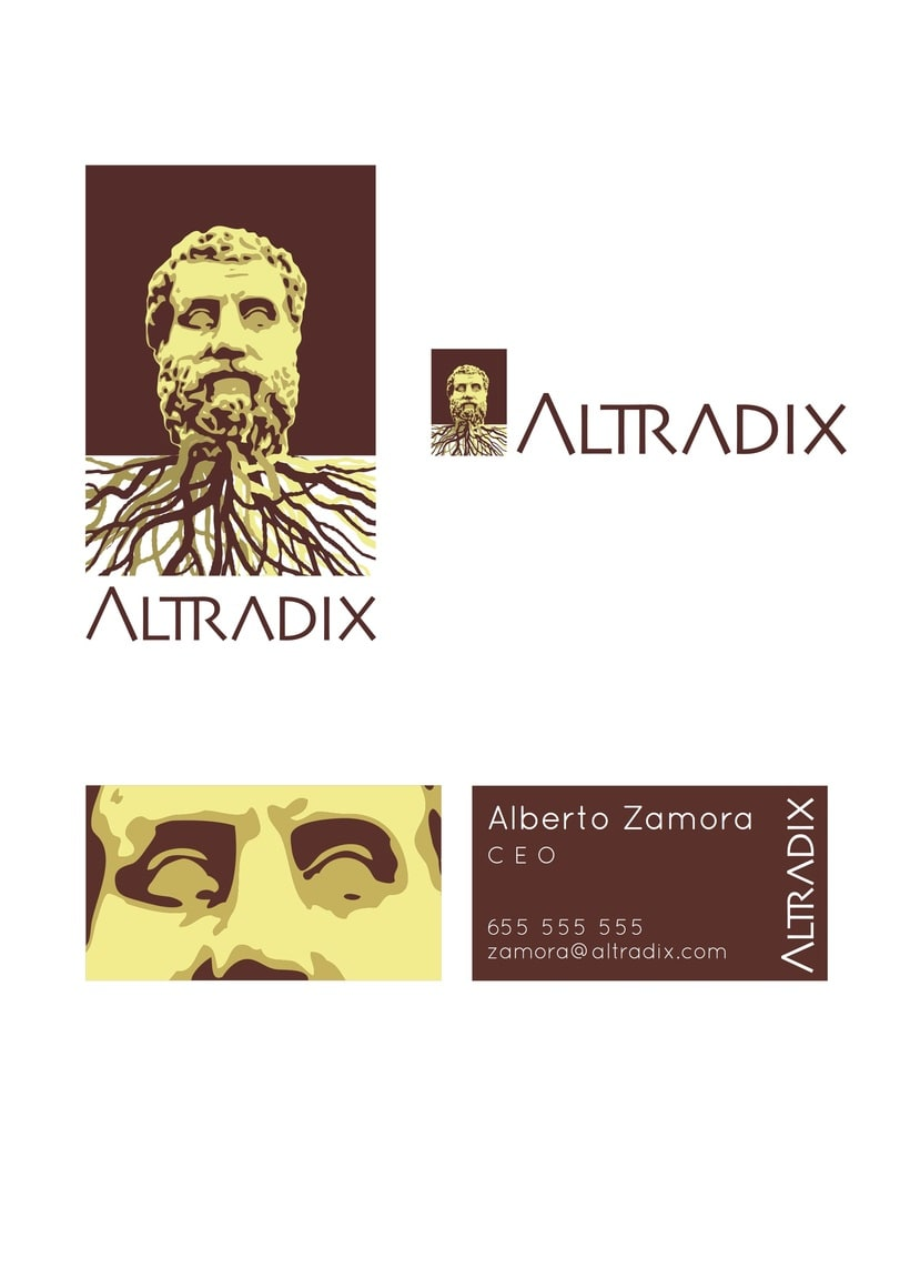 Altradix: Nombre e Imagen corporativos 1