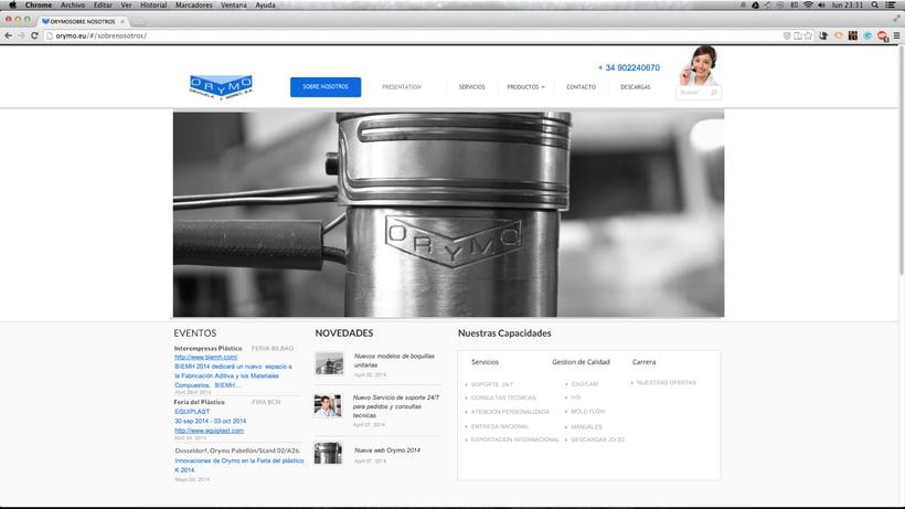 diseño WEB para la empresa:  ORYMO S.A  0