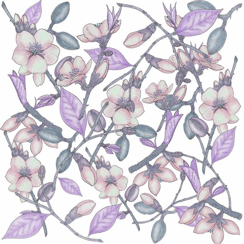Flor de almendra para Insecta Shoes. 1