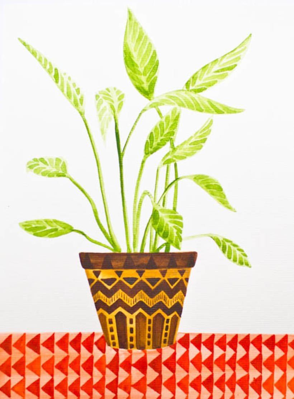 Plants 0
