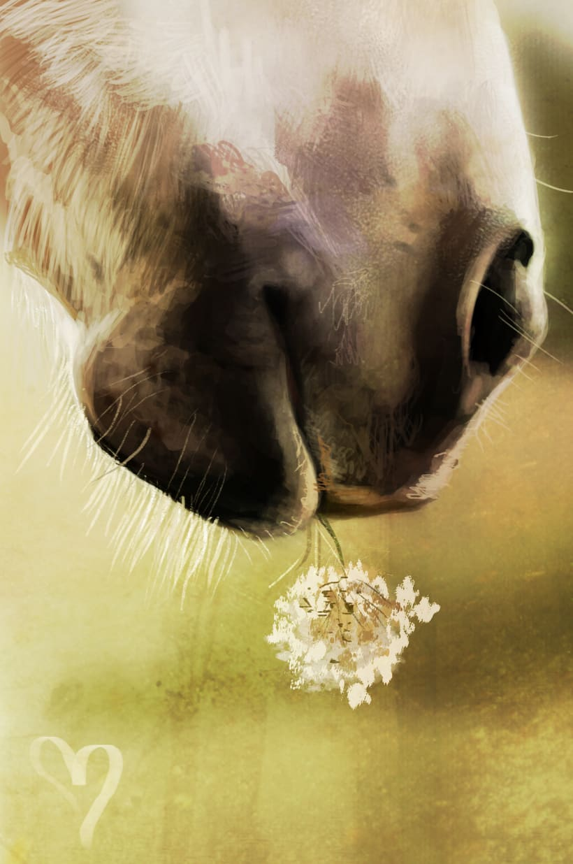 Prints.Poster.Horses -1