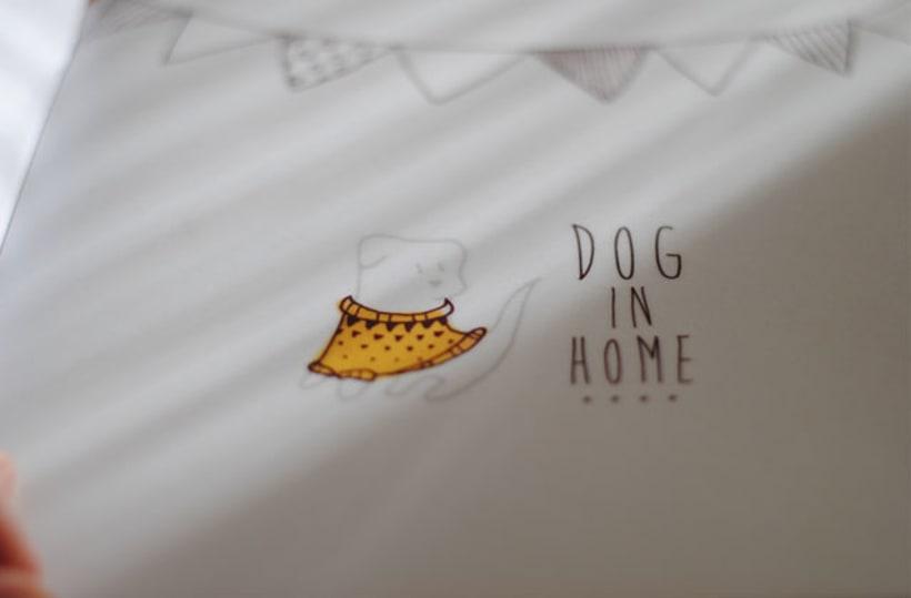Campaña adopción de perros 6
