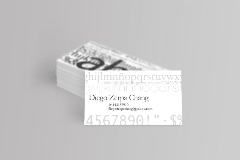 Diego Zerpa 2