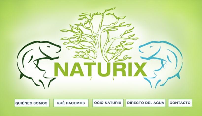WEB DESIGN: Naturix Aquiculture 1