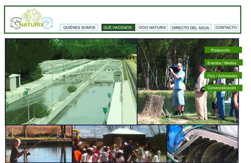 WEB DESIGN: Naturix Aquiculture 2