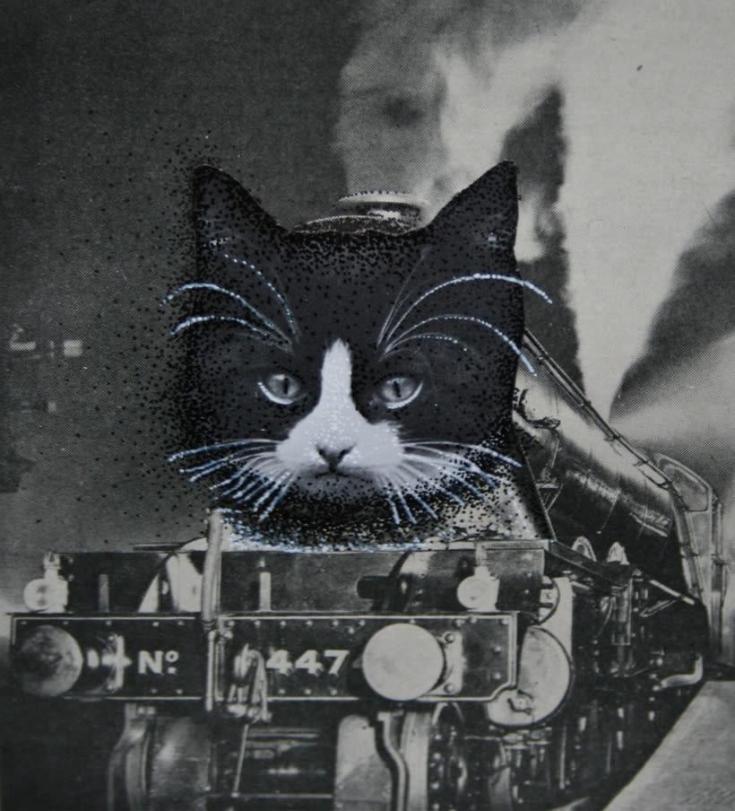 bloc de dibujo //  Gatos 4