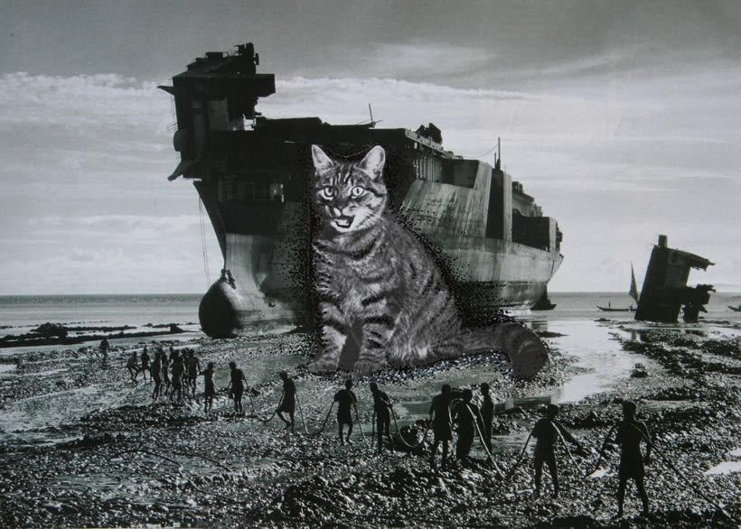 bloc de dibujo //  Gatos 6
