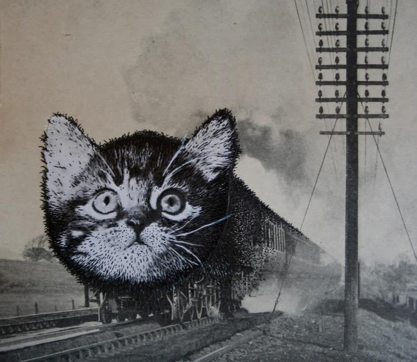 bloc de dibujo //  Gatos 7