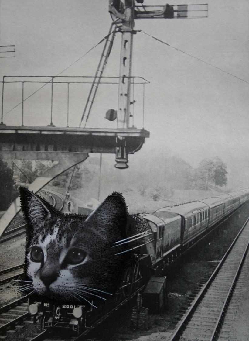 bloc de dibujo //  Gatos 8
