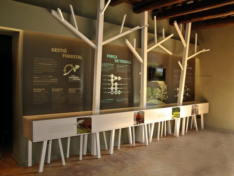 Centre de Desenvolupament Forestal -1