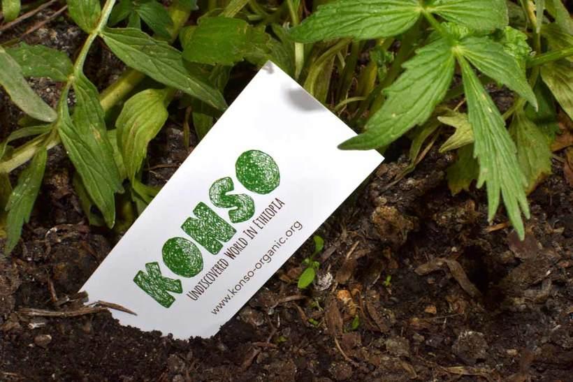 Konso Organic branding & web 2
