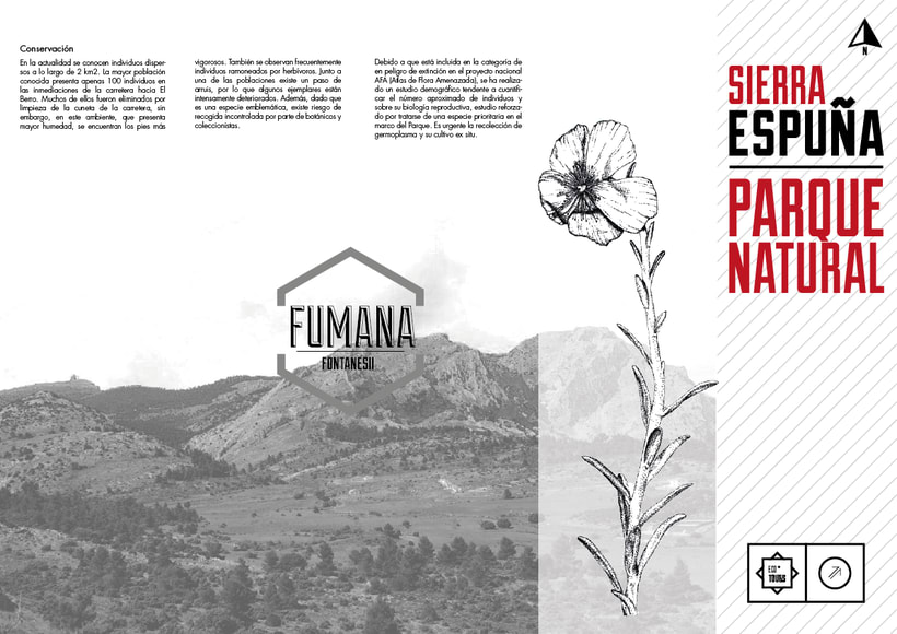 Sierra Espuña 4
