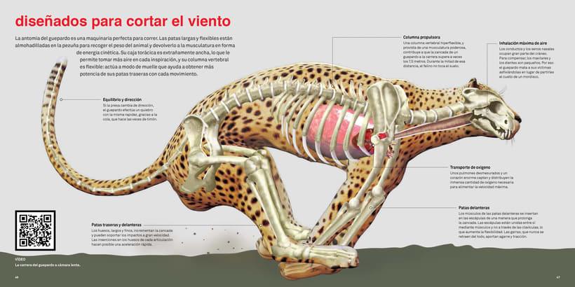 Infografías del libro 'Con V de Velocidad'  3