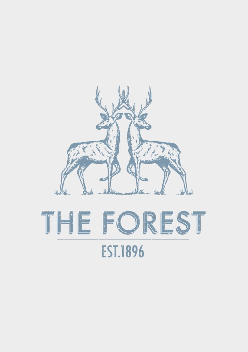 THE FOREST 6