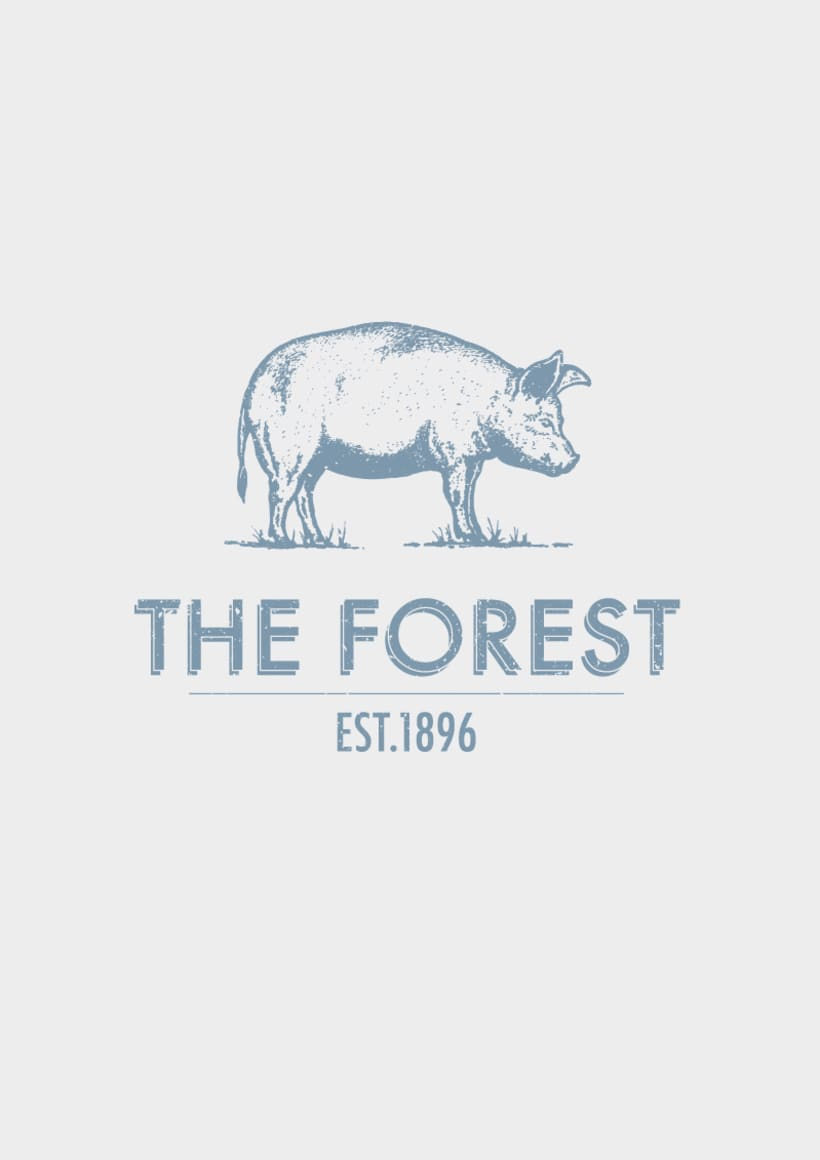 THE FOREST 5