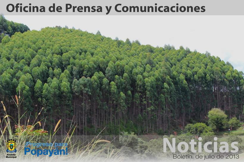 Cabezotes Noticias 2013 21