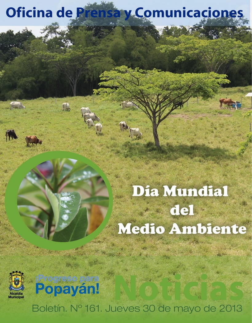 Cabezotes Noticias 2013 39