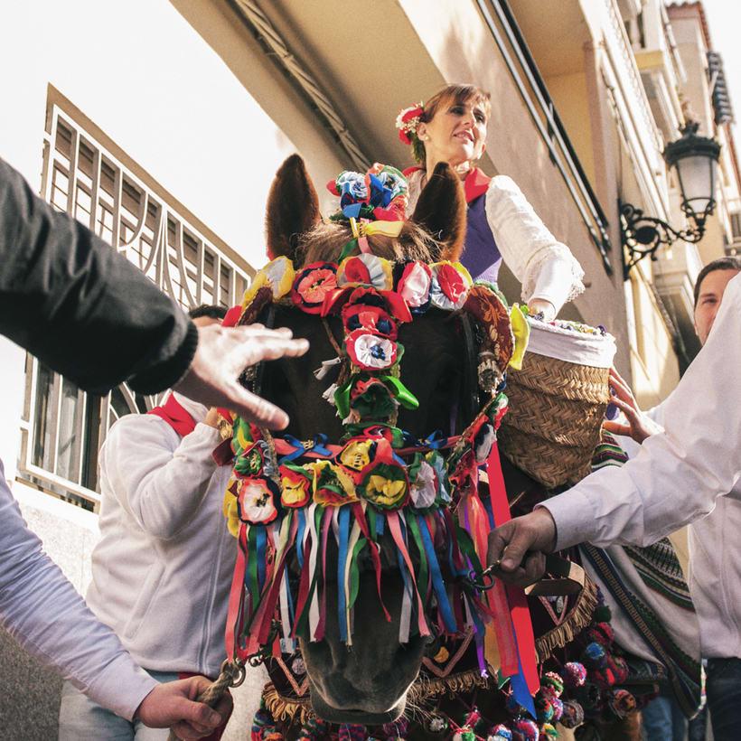 Enguera, San Isidro labrador y San Antonio abad 2016 0