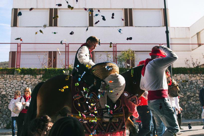 Enguera, San Isidro labrador y San Antonio abad 2016 6