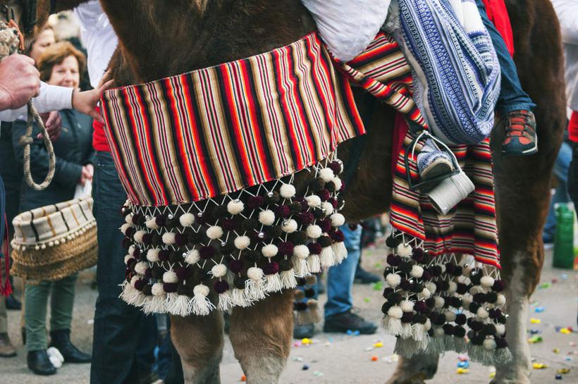 Enguera, San Isidro labrador y San Antonio abad 2016 21