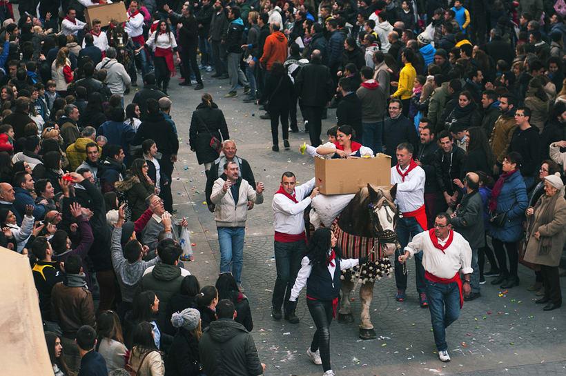 Enguera, San Isidro labrador y San Antonio abad 2016 30