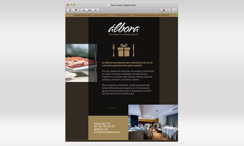 Diseño Newsletter - Álbora 4