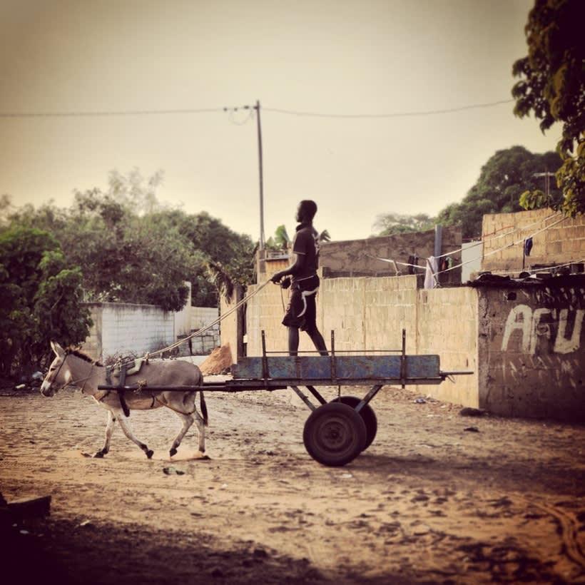 Senegal 3
