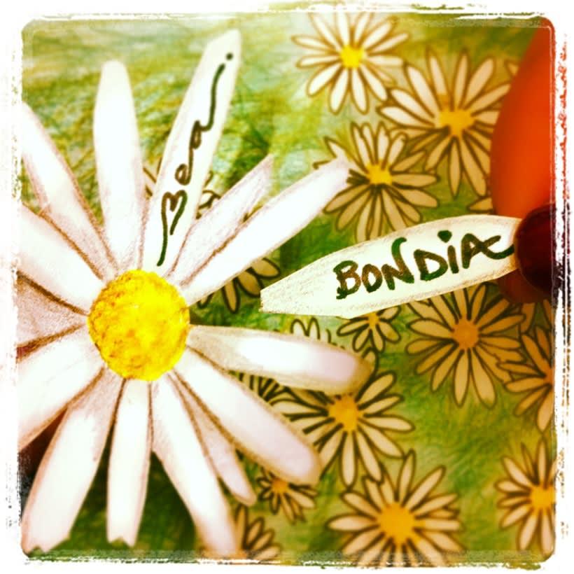 BonDia 16